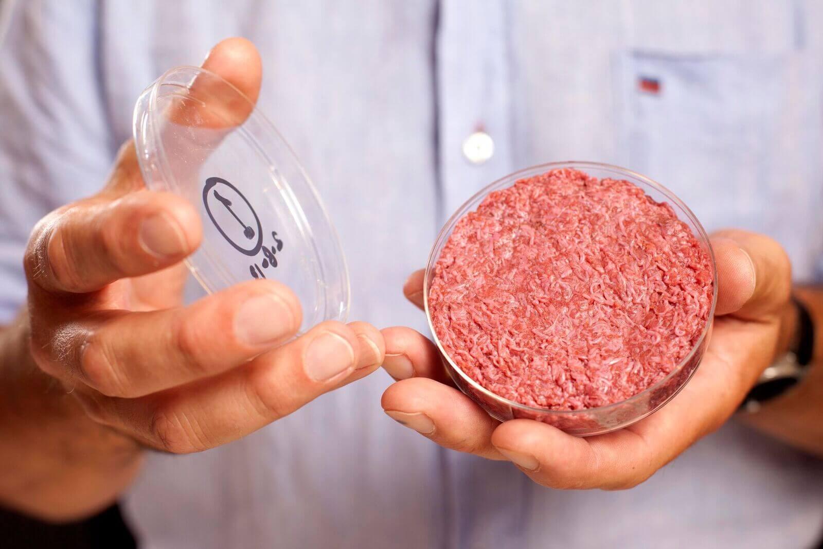 Carne sintetica: il futuro della carne?